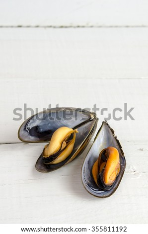 Mussels in the shell - stock photo