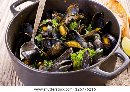 mussels in white wine - stock photo