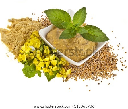 Mustard dish sauce and powder, seeds with mustard flower bloom close up isolated on white - stock photo
