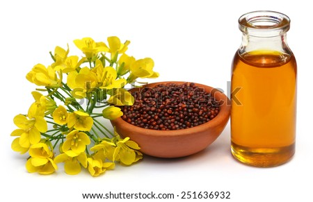 Mustard flowers, seeds and oil over white background - stock photo
