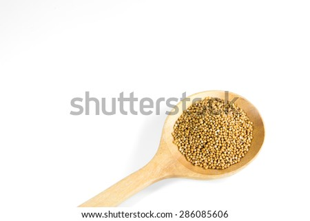mustard seed on white background - stock photo