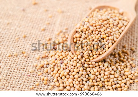 Mustard seeds in wooden scoope on sack background.