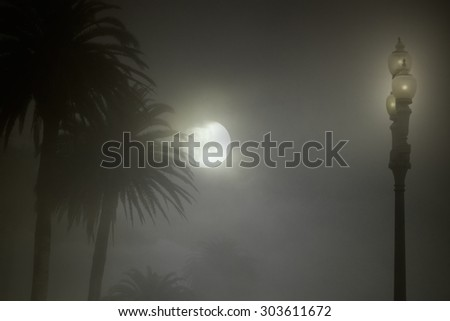 Mysterious foggy park in a full moon night. Added some digital noise. - stock photo