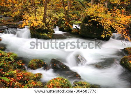 Mysterious Oirase Stream in the autumn forest of Towada Hachimantai National Park in Aomori Japan (Calm and steady light source version)  - stock photo