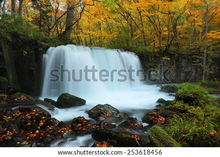 Mysterious waterfall in the autumn forest of a national park in Aomori Oirase Japan - stock photo