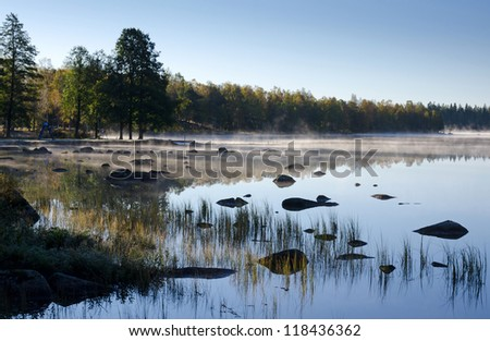 Mystic foggy morning in October month - stock photo