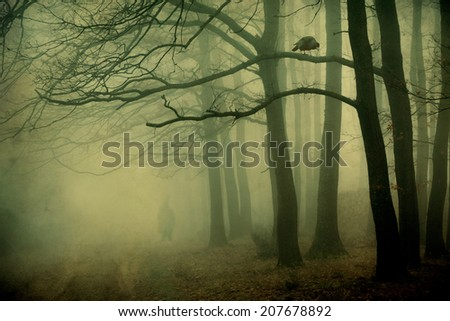 Mystic forest with a crow and man silhouette - stock photo