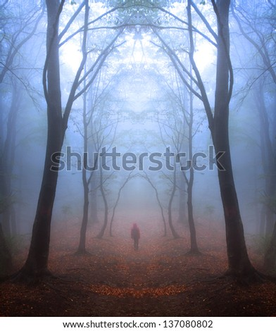 Mystic forest with red leaves and blueish atmosphere (fairytale) - stock photo