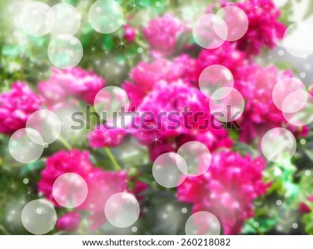Mystical gardens bokeh - stock photo