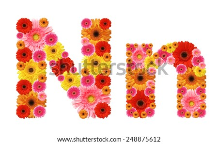 n, flower alphabet - stock photo