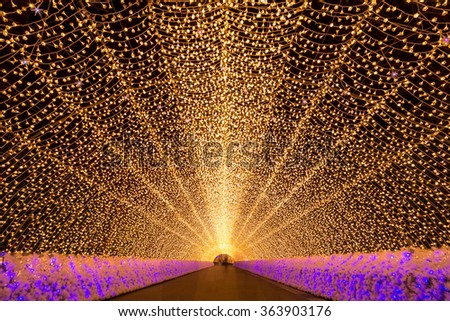Nagoya, Japan. Nabana no Sato garden at night in winter - stock photo