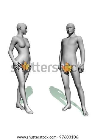 Naked Adam and Eve with a leaf in white background - stock photo