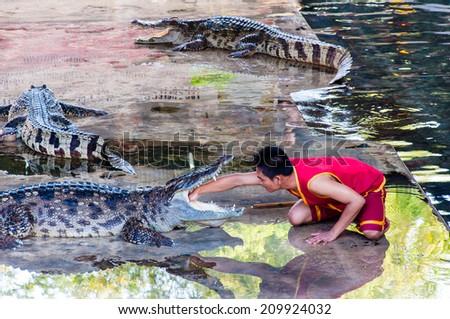 Nakhon Pathom, Thailand - May 24, 2014: Crocodile show at Samphran Crocodile Farm. The farm has more than 10,000 crocodiles and is one of the most impressive public crocodile displays in the world. - stock photo