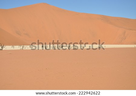Namib Desert, Sossusvlei, Namibia - stock photo