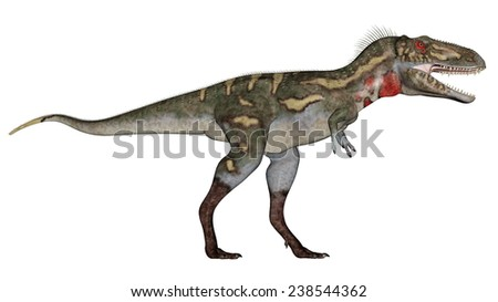 Nanotyrannus dinosaur walking in white background- 3D render