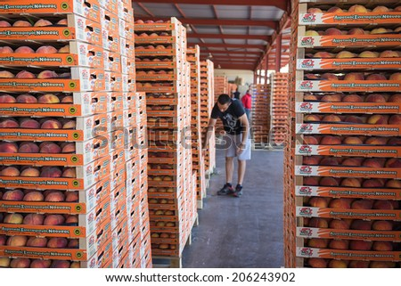 "NAOUSSA, GREECE- JULY 10, 2014: Products of Agricultural Cooperative of Naoussa, Greece, carried in boxes. The famous ""Naoussa Peaches"", are the area's main product. Fruit production. - stock photo"