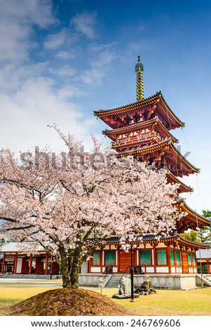 Nara, Japan at the Pagoda of Yakushi-ji Temple. - stock photo