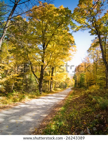 Narrow dirt road crossing a fall forest scenery - stock photo