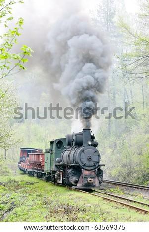 narrow gauge railway, Banovici, Bosnia and Herzegovina - stock photo