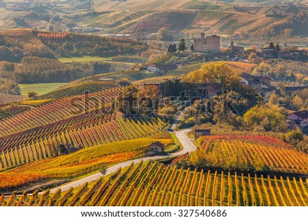 Narrow road through colorful autumnal vineyards in Piedmont, Northern Italy. - stock photo