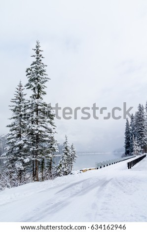 Narrow Roadway Along the Lake on a Foggy Winter Morning