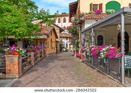 Narrow street and typical houses with flowers in town of Barolo, Piedmont, Northern Italy.