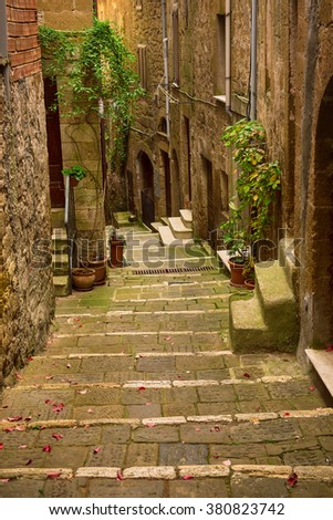 Narrow street of medieval tuff city Pitigliano with green plants and cobblestone stairs, travel Italy vintage  background