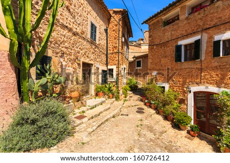 Narrow street old traditional houses village cactus plant, Fornalutx, Majorca island