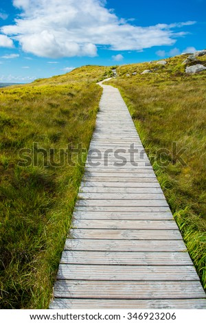 Narrow Track Upon A Hill - stock photo