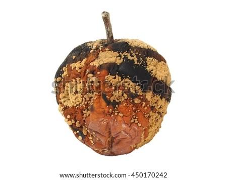 Nasty rotten apple isolated on white background - stock photo