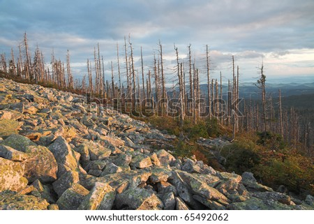 "national park ""Bavarian Forest"" - stock photo"