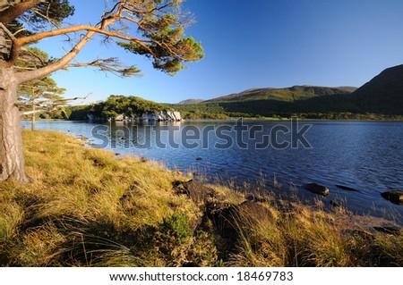 National Park , Ireland - stock photo