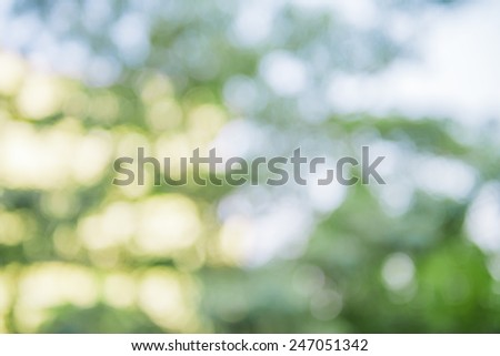 Natural background of bokeh - stock photo