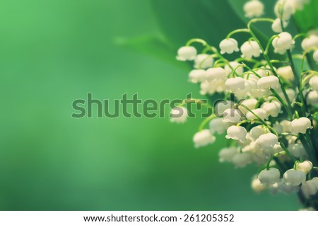 Natural background with blooming lilies of the valley in vintage style - stock photo