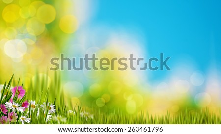 Natural backgrounds with green foliage under bright summer sun - stock photo