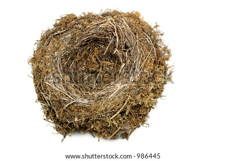 Natural bird nest against a white background.