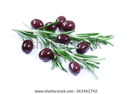 natural black (red) olives with fresh rosemary twigs - stock photo
