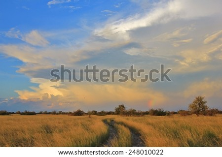 Natural Bliss - Landscape Background from Africa - Tranquility and Peace - stock photo