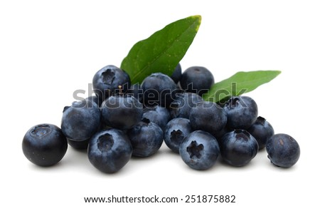 natural blueberries and leaves on white background - stock photo