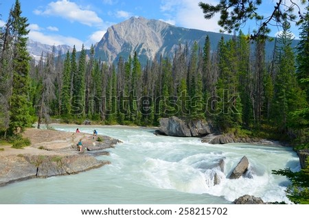 NATURAL BRIDGE, ALBERTA - AUGUST 1 - Natural Bridge at Yoho National Park, Canada on August 01, 2014. The beautiful Natural Bridge is visited by millions of people every year. - stock photo