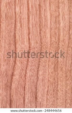 Natural Cherry Wood Brownish Red Veneer, grunge texture sample - stock photo