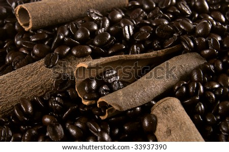Natural cinnamon sticks in coffee beans - stock photo