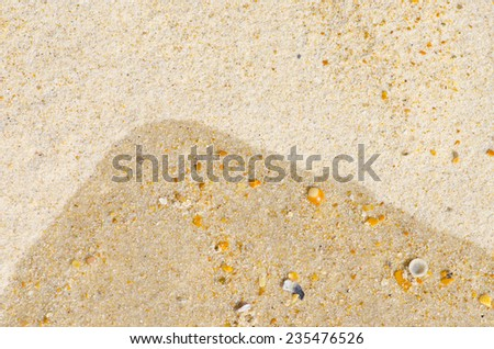 Natural design textured backdrop, background or wallpaper of sand and shells at wet and dry beach. - stock photo