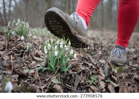 Natural environment protection concept: Man treads on flowers in the spring forest, destroying it. - stock photo
