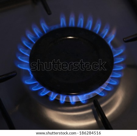 Natural gas burns in the kitchen - stock photo