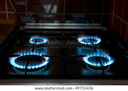 Natural gas flames of a kitchen stove - stock photo