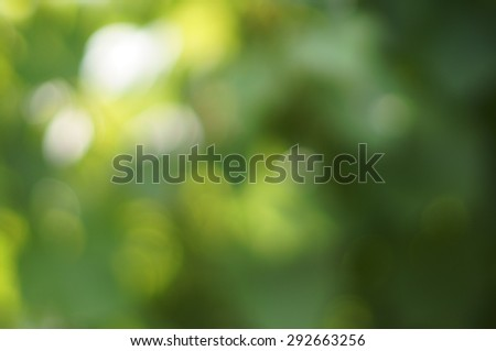 Natural green blured background with bokeh. - stock photo