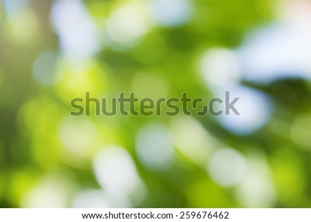 Natural green blurred and bokeh background,Abstract backgrounds. - stock photo