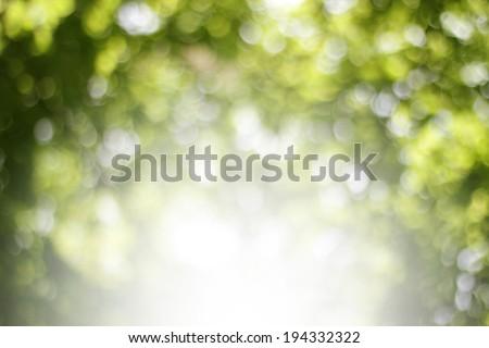 Natural green blurred background. Defocused green blurred background. - stock photo