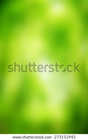 Natural green bright blur background of sunny summer forest - stock photo